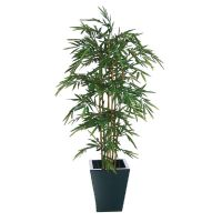 Natural Bamboo - 5ft (Fire resistant)